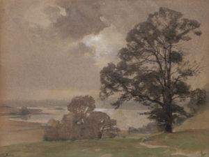bord-de-lac-au-gd-arbre