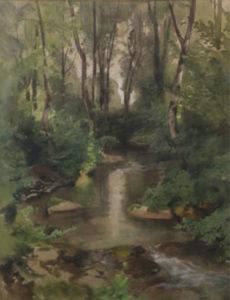 Rivière en sous-bois
