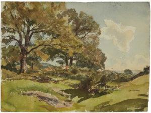 paysage-vallonne